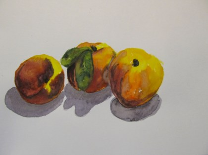 Farmer's Market Peaches, Aug. 30, 2011, watercolour on paper