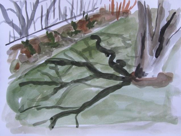 Backyard shadows 1, May 9, 2013, watercolour on paper