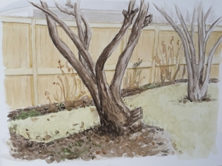 Shade Garden View, Apr. 9, 2017, watercolour on paper