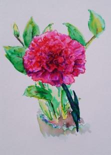 Carnation study, watercolour pens, Feb. 20, 2018