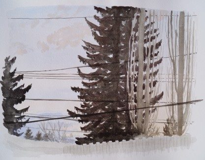 Trees and Powerlines, Mar. 29, 2017, watercolour on paper, 11 x 14