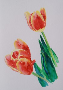 Tulips 1, Mar. 4, 2018, watercolour pens
