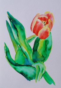 Tulips 3, Mar. 6, 2018, watercolour pens